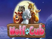 wolfcub_not_mobile