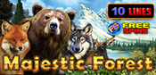Majestic_Forest
